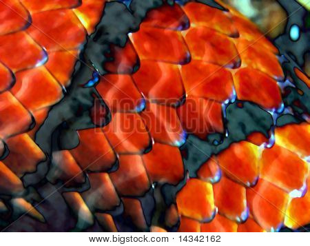 Abstract design from snakeskin close-up