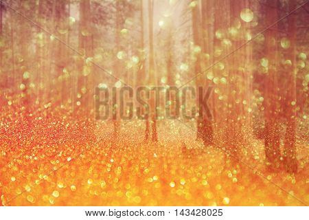 Magical dreamy bokeh background with pine trees and holiday lights
