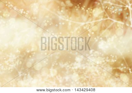 Golden Christmas holiday bokeh background with blur lights