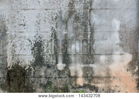 Black and white abstract concrete background .
