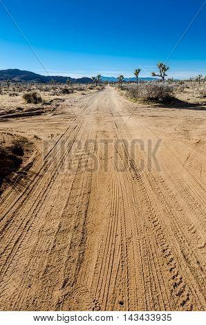 Desert cross roads vertical with car tracks
