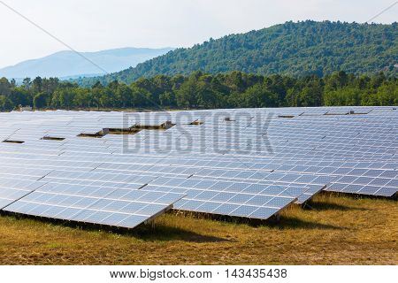 Field With Solar Collectors