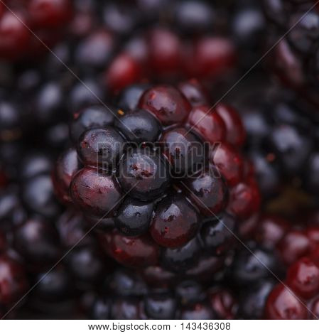 A Fresh Juicy Ripe Dewberry Close-up