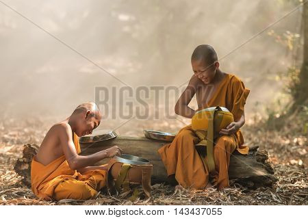 Activities of novices,after eating in the forest.
