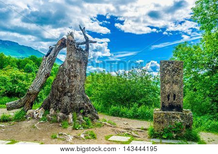 The old broken tree and the preserved medieval Khachkar behind the Chrches of Haghartsin Monastery surrounded by lush greenery Armenia.