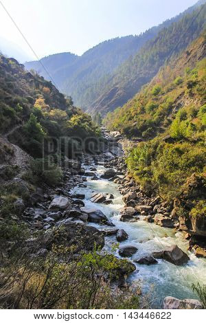 Forest scenery with river among the mountains of Langtang valley one of the popular trekking route in Nepal