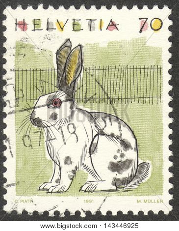 MOSCOW RUSSIA - CIRCA JULY 2016: a post stamp printed in SWITZERLAND shows a domestic rabbit (Oryctolagus cuniculus domesticus) the series