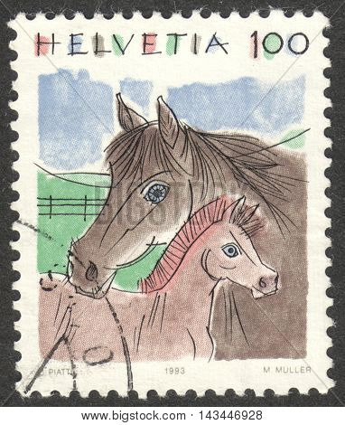 MOSCOW RUSSIA - CIRCA JULY 2016: a post stamp printed in SWITZERLAND shows horses (Equus ferus caballus) the series