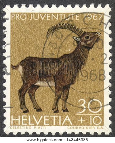 MOSCOW RUSSIA - CIRCA JULY 2016: a post stamp printed in SWITZERLAND shows a wild goat (Capra ibex) the series