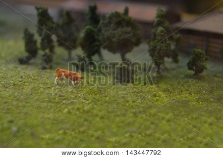 Brown cow grazes in a meadow. Cattle on pasture.Small world. Layout