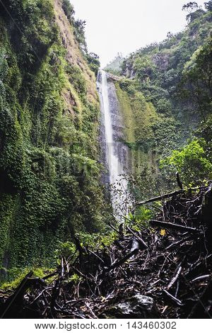 Madakaripura Waterfall , Indonesia , vertical composition
