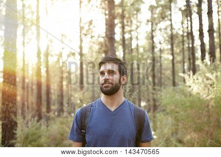Young Guy Looking Around The Forest
