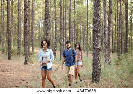 Three Friends Lost In The Woods