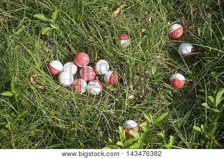 Thailand - August 20, 2016: Group of pokeball on grass (Pokemon Ball). Pokeball toy of the game Pokemon Go at Thailand.