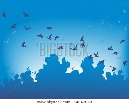 Vector illustration of a flock of flying birds