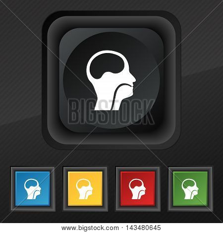 larynx Medical Doctors Otolaryngology icon symbol. Set of five colorful stylish buttons on black texture for your design. Vector illustration