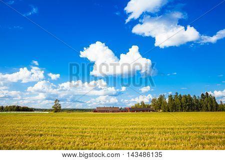 Red Farm In Rural Finland