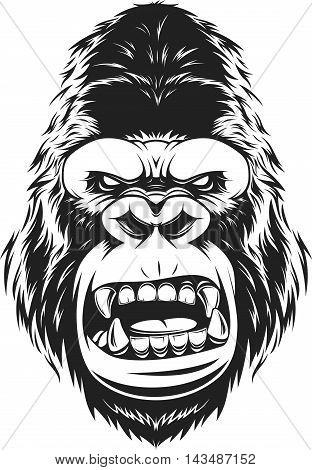 Vector illustration fierce gorilla head on white background