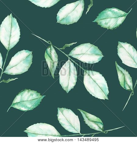 A seamless floral pattern with the watercolor roses leaves on a dark background