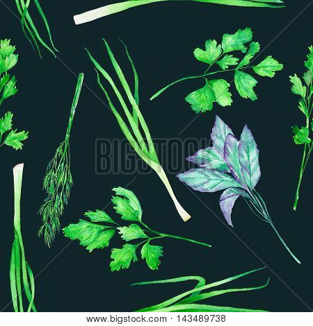 A seamless pattern with the isolated watercolor spices (spicy herbs): onion green, dill, parsley, cilantro and basil, painted on a dark background