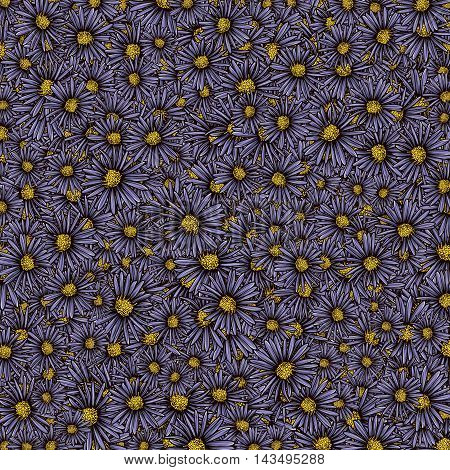 Decorative background with Aster flowers. Template for decoration.