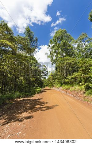 Red Karura Forest Road, Nairobi, Kenya