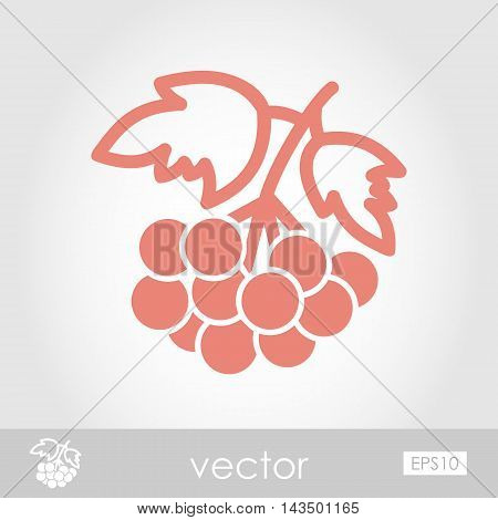 Rowan branch outline icon. Berry fruit. Vector illustration eps 10