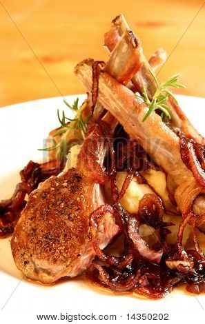 Lamb cutlets on a parsnip mash, with caramelized spanish onions.  Cooked (and eaten) by the photographer.