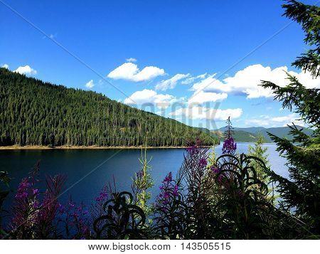 Landscape with lake Vidra, in Southern Carpathians, Romania