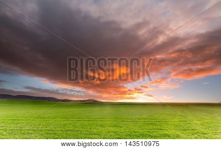 Sunrise over a cereal field with an amazing sky