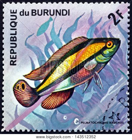 BURUNDI - CIRCA 1974: a stamp printed in Burundi shows Kribensis Pelmatochromis Pulcher Freshwater Fish circa 1974