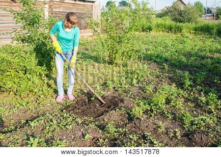 young beautiful woman weeding potato sprouts using hoes outdoor on summer day