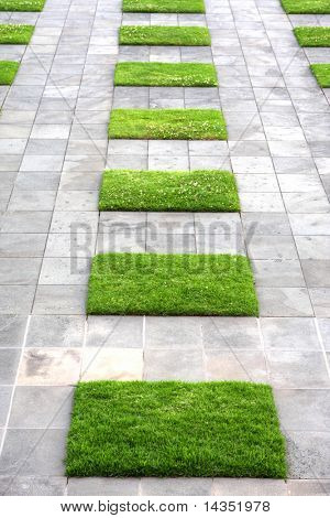 Paving stones and lawn squares, in interesting geometric pattern.