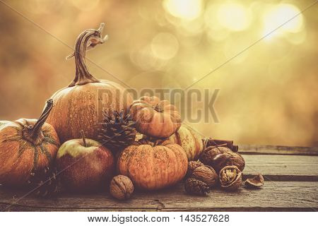 Autumn nature concept. Fall fruit and vegetables on wood. Thanksgiving dinner. Blur background, light effect, toned