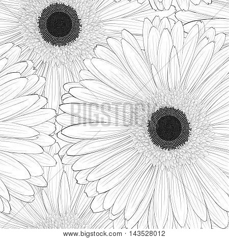 Beautiful monochrome black and white seamless background with gerbera flower . Hand-drawn contour lines and strokes.