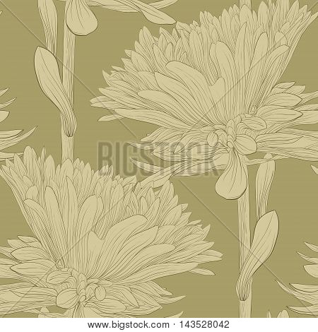 Beautiful monochrome seamless background with flowers aster. Hand-drawn contour lines and strokes.