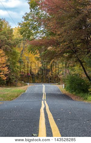 A road crossing through the woods in autumn