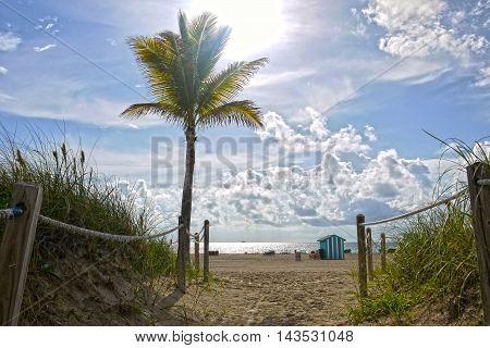 Beautiful view of Miami Beach, Florida. USA