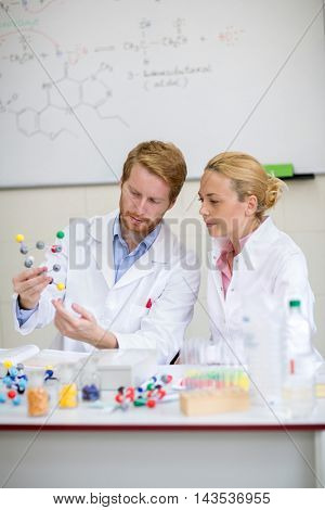 Professor and his assistant explain the molecular structure in the classroom