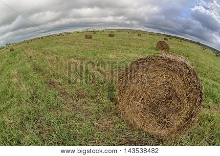 Haystack rolls on the field with green grass and cloudy sky. Fish-eye lens.