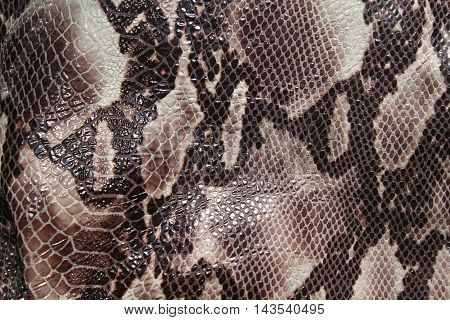 Background snake skin texture and spots for design