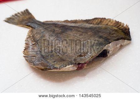 Flounder Raw Fish On A Dark Background