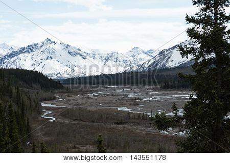 View of the Teklanika River in Alaska's Denali National Park