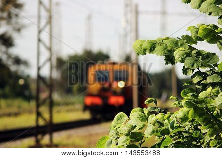 Railcar for maintenance of the railway and security checks and the young elm leaves in the foreground