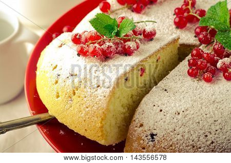 Vanilla sponge cake with fresh red currants on white background, toned