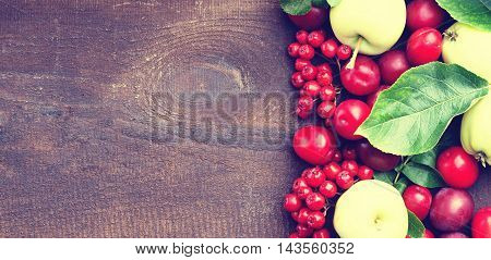 Plums, apples and rowanberry on a wooden background