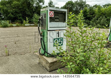 Gas Station Overgrown With Bushes