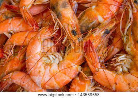 The shrimp grill sea food  for background