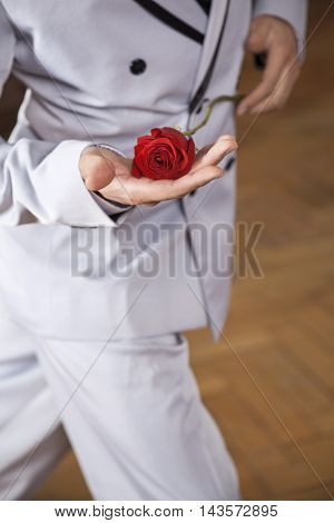 Midsection Of Tango Dancer Holding Red Rose In Restaurant