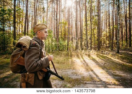 Teryuha, Belarus - October 3, 2015: Unidentified Re-Enactor dressed As World War II Russian Soviet Soldier In Camouflage Walks Through Forest On Road